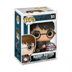 Pop! Harry Potter Harry with Firebolt and Feather Limited Edition