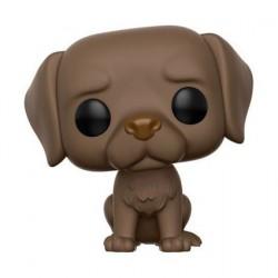Figur Pop! Pets Dogs Labrador Retriever Chocolate (Vaulted) Funko Online Shop Switzerland