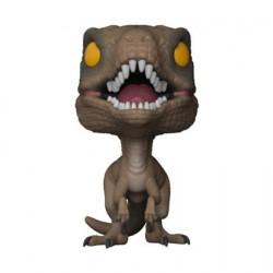 Figur Pop! Jurassic Park Velociraptor (Vaulted) Funko Online Shop Switzerland