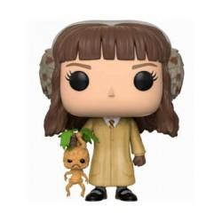 Figurine Pop! Harry Potter Hermione Herbology (Rare) Funko Boutique en Ligne Suisse