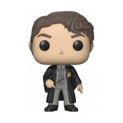 Figur Pop! Harry Potter Tom Riddle Funko Online Shop Switzerland