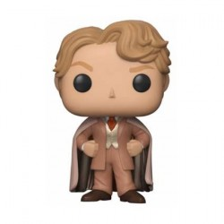 Figur Pop! Harry Potter Gilderoy Lockhart Funko Online Shop Switzerland